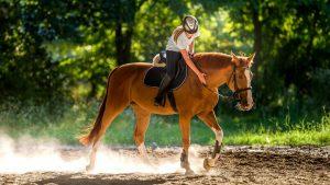 L'équitation peut-être une passion dévorante